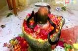 VIDEO: मंदिर में भोलेनाथ के दर्शन करता दिखा नाग-नागिन का जोड़ा