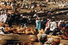 मुस्लिम व्यापारी इस शहर से होकर पश्चिमी अफ्रीका से सोना यूरोप और मध्य-पूर्व ले जाते थे, जबकि उनकी वापसी नमक और अन्य उपयोगी वस्तुओं के साथ होती थी।