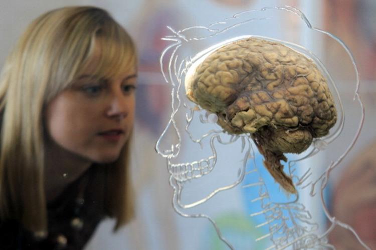आपके दिमाग की ताकत को बढ़ा देंगे ये 20 अचूक उपाय! जानिए..