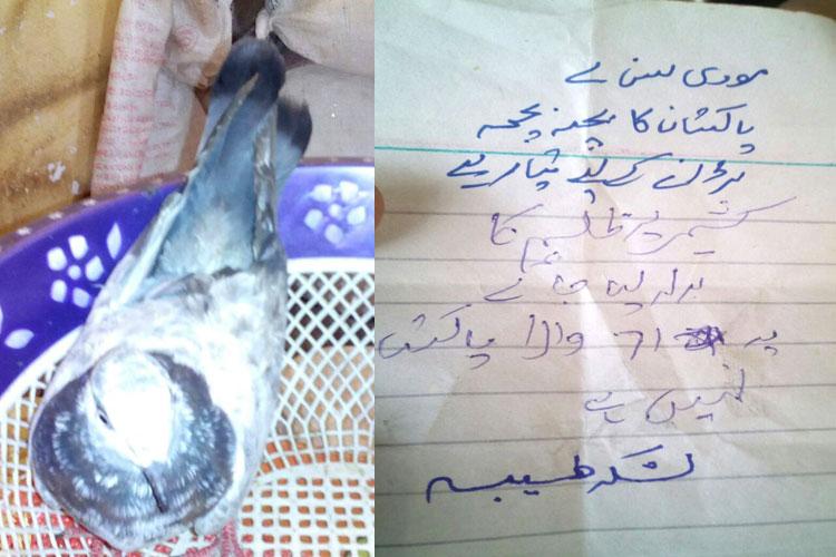 कबूतर लाया लश्कर की चिट्ठी-