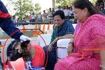 जब एक कुत्ते ने मुख्यमंत्री वसुंधरा को भेंट किया फूलों का गुलदस्ता