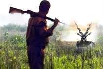 इधर सलमान बरी हुए, उधर हुआ सांभर का शिकार, शिकारियों ने चलाई 2 गार्डों पर गोली
