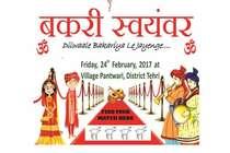 बकरी स्वयंवर: प्रियंका, कटरीना और दीपिका की शादी कल