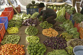सब्जी की लागत भी नहीं मिली तो किसानों ने मुफ्त में ही बांट दी