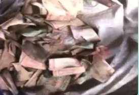 नोटबंदी की मारः भिखारी ने पूछा, कैसे बदलवाऊं अपने 96 हजार?