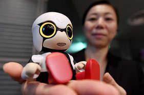 देखें: पार्टनर की तरह अकेलापन दूर करेगा ये रोबोट, मालिक के सोने पर खुद भी सो जाएगा