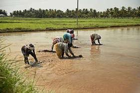 किसान कहीं से भी लें कृषि यंत्र, विभाग के नियमानुसार मिलेगा अनुदान
