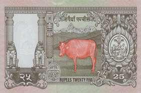 नेपाल चीन में करा रहा अपने नोटों की छपाई