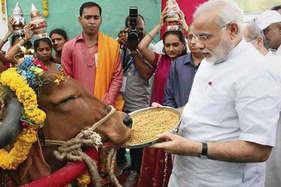 'नास्त्रेदमस की भविष्यवाणी, मोदी भारत को ऊंचाइयों पर ले जाने वाले शख्स'