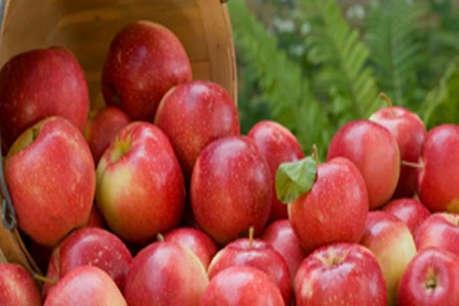 यकीनन सेब खाने के ये 10 फायदे नहीं जानते होंगे आप