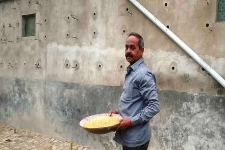 विश्व गौरैया दिवस: 'स्पैरो-मैन' जिनके घर बसती हैं सैकड़ों गौरैया