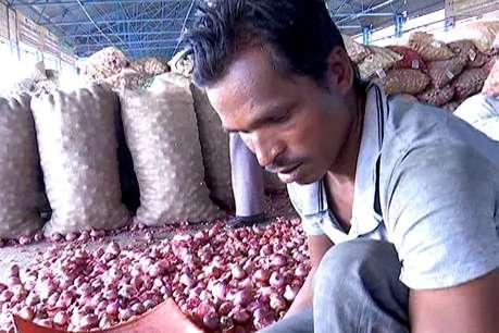प्याज एक्सपोर्ट में 3 गुना इजाफा, लेकिन किसानों को कोई फायदा नहीं