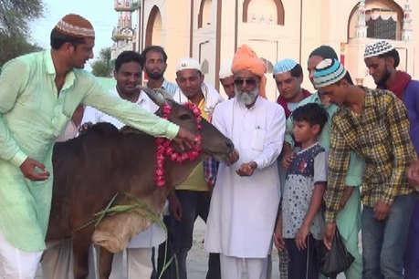 मुस्लिमों ने गाय को लड्डू खिलाकर खोला रोजा, ईद पर उसी के दूध की खाई खीर