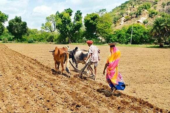 कर्ज माफी तो दूर राजस्थान में किसानों को लोन मिलना भी हुआ मुश्किल