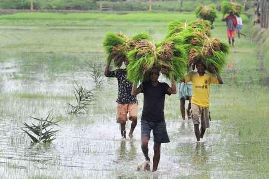 यूपी में बारिश से किसानों के चेहरे खिले, बिहार में झमाझम