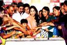The cast of Rajan Shahi's show 'Yeh Ristha Kya Kehlata Hai' partied on the completion of 1200 episodes of their show.