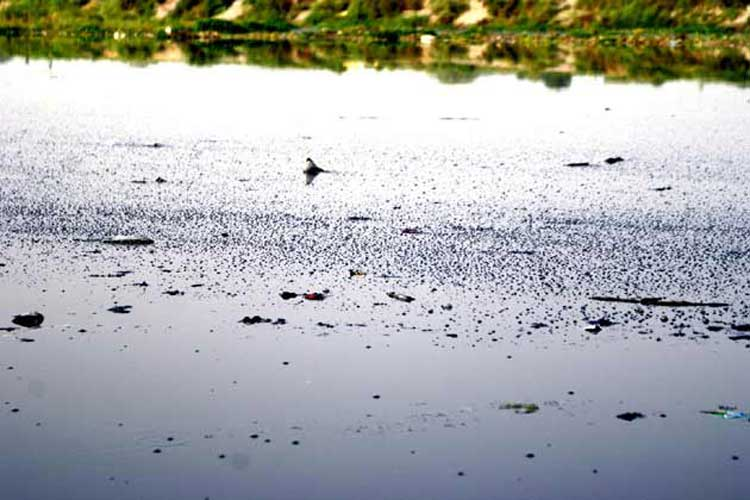 Two drown in Yamuna
