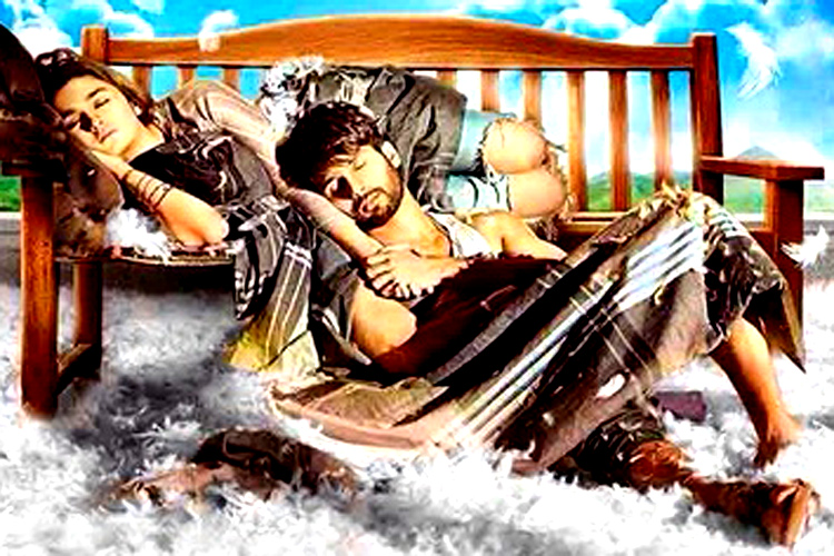 Alia Bhatt and Shahid Kapoor starrer 'Shaandaar' poster released