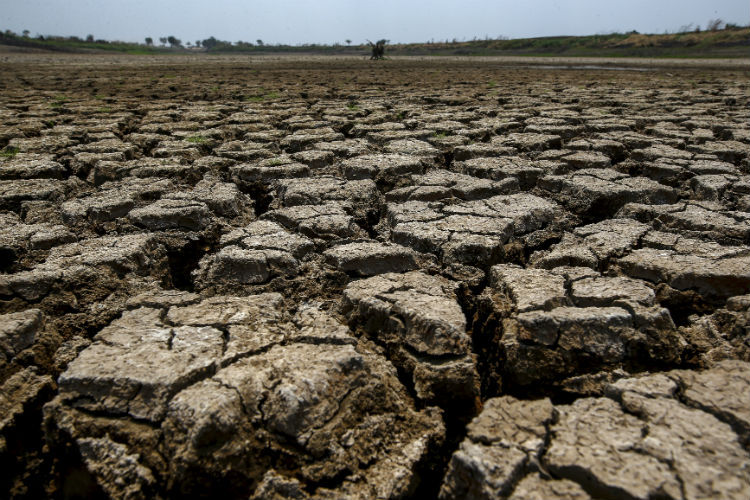 maharashtra drought The bengal famine of 1943 was the last catastrophic famine in india the maharashtra drought drought in which there were zero deaths and one which is known for.