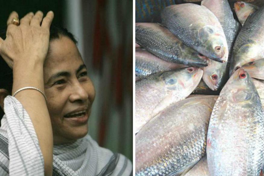 Bangladesh Sends Hilsa, Molasses, Sari for Mamata's Swearing-in Ceremony