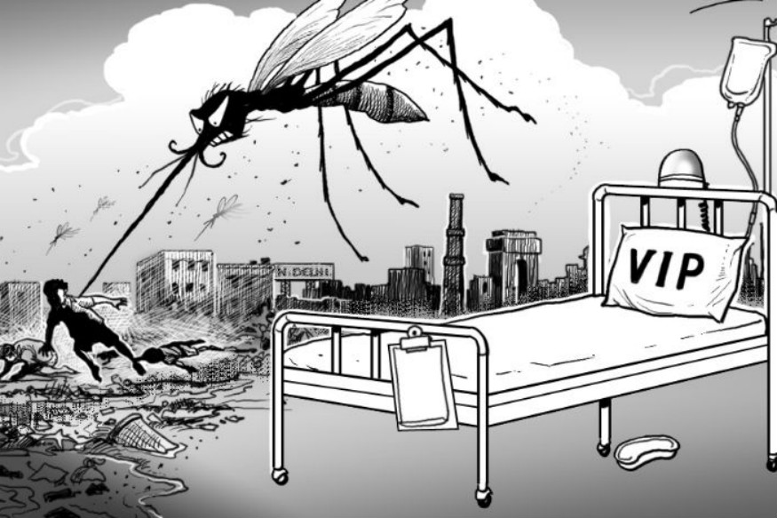 Special Teams to Prevent Dengue in President's Estate