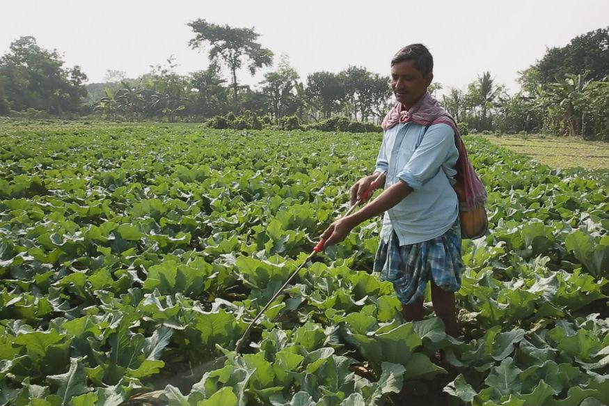 Maharashtra Farmers who Regularly Repay Loans Want More Benefits