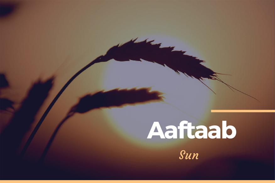 Aaftab1