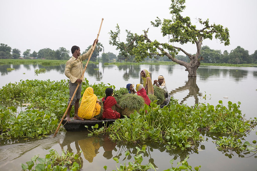 Bridge Breaks in Flood-hit Bihar, Family Drowns One Step Short of Safety