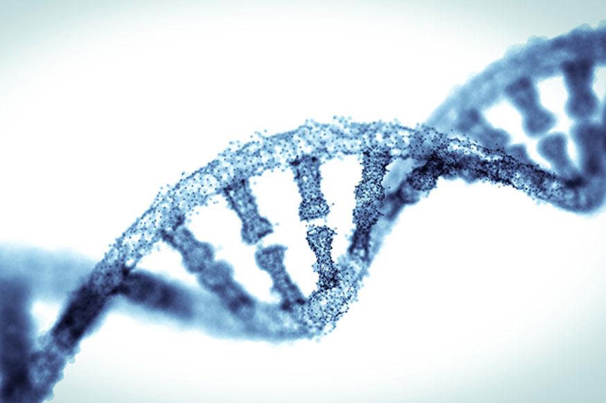 Diabetes and Heart Disease Linked By Same Genes: Study