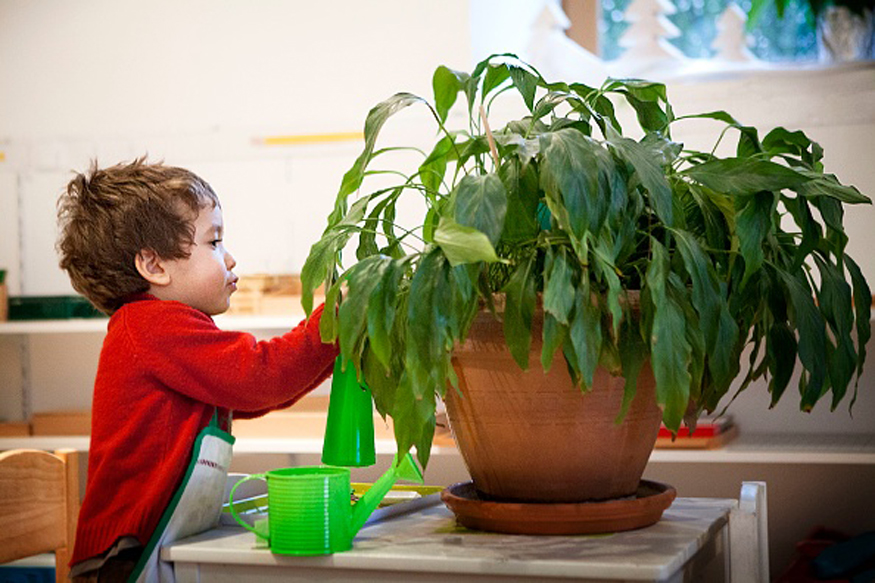 Weekend Goals: Start with Home Gardening With Your Kids!