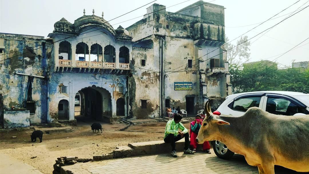 Alwar scene