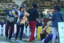 'Bigg Boss 9', day 36: Rochelle-Kishwer rivalry heats up; Suyyash criticises Rimi