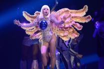 Lady Gaga's Stunning Looks