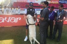 Virat Kohli Chooses to Chill With a New Friend in Nagpur