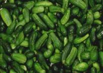 Childless? Go to Goa with cucumbers