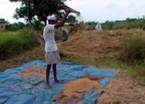 BJP to meet Prez over farmer suicide