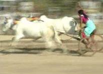 Vidarbha's women race to the finish line