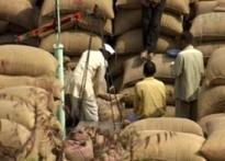 Free trade: farmers' pride, millers' envy