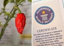 Indian chilli world's hottest: <I>Guinness</I>