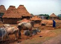 Bihar villages forgotten in eco boom