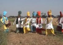 Punjab, Haryana celebrate Baisakhi