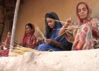 Golden grass empowers Orissa women