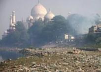 Maya let off but Taj in a dire strait