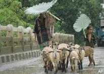 Militants kills 8 migrant workers in Assam