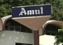 Amul opposes restrictions on milk powder exports