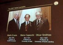Designer mice pioneers win Nobel for medicine