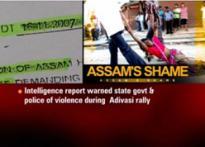 Govt could have averted Assam violence, says report