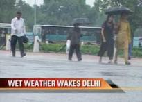 Delhi records 40 mm rainfall overnight
