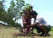 Daring Dalit starts green revolution against myth