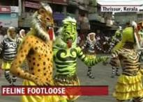 Tiger Dance: Onam's traditional and distinct identity